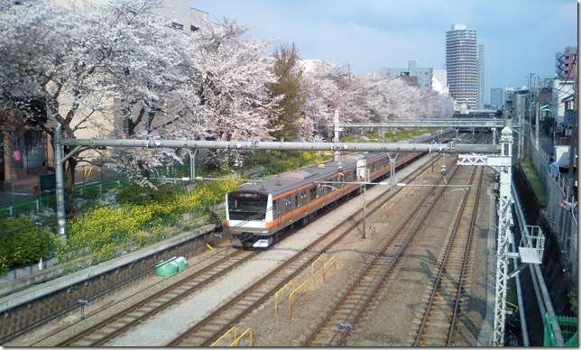 E233系-3月28日撮影